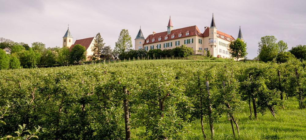 Mietwohnungen bei Schloss St. Martin